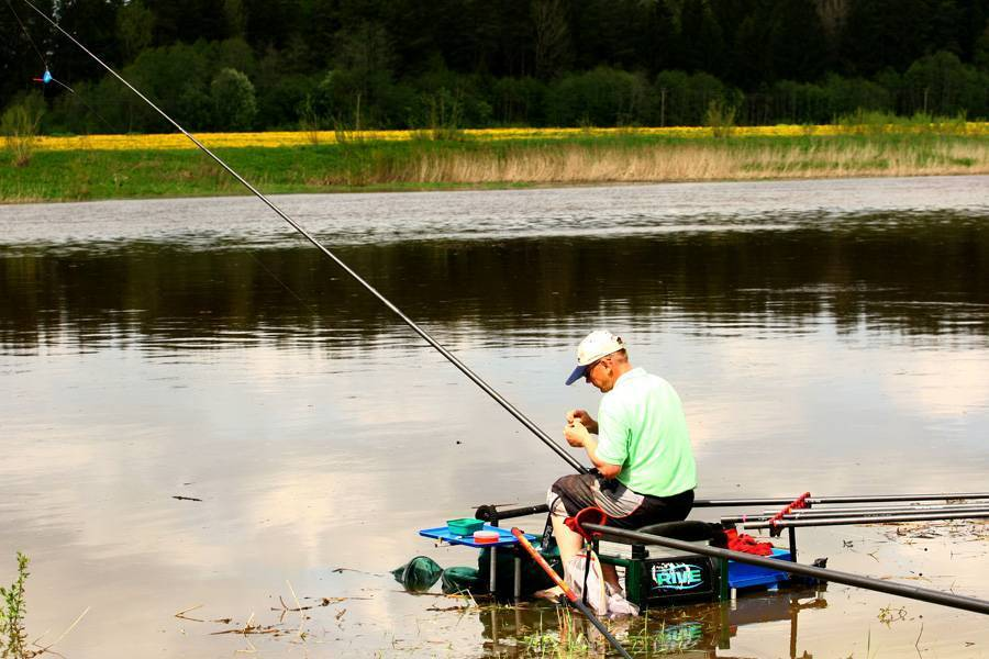 Ловля сома на донку - читайте на сatcher.fish