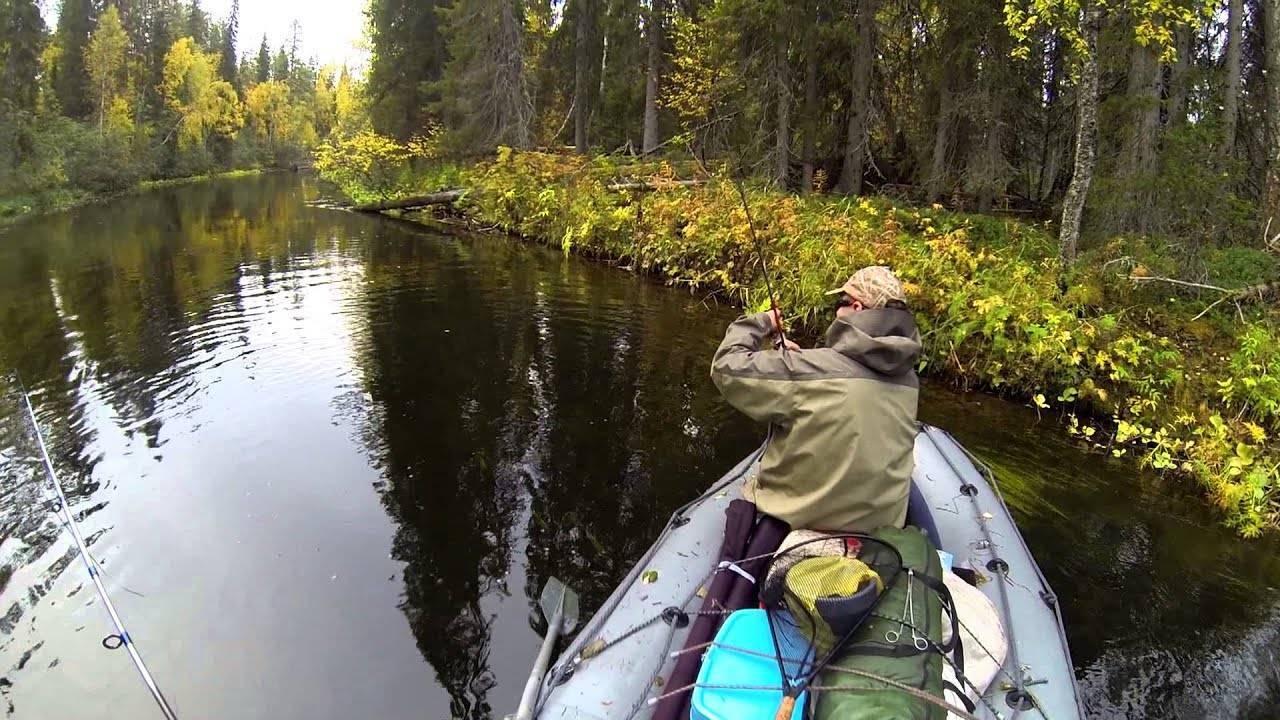 Ловля хариуса поплавочной удочкой: особенности и нюансы – рыбалке.нет