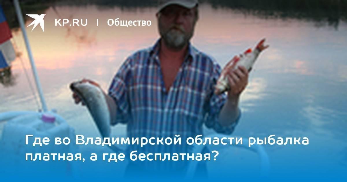 Платные пруды Владимирская область