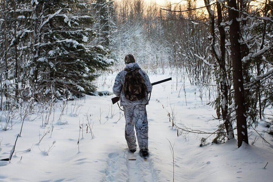 Лёгкая добыча. как устроена вольерная охота в россии — секрет фирмы