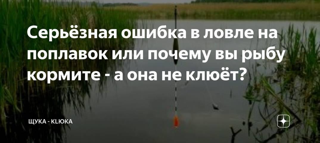 Исчезла рыба? или почему нет клева?