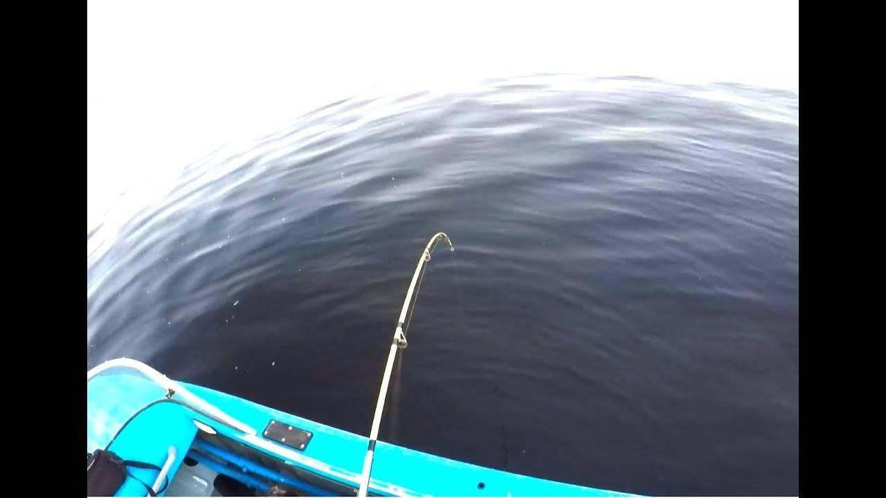 Ловля сама на квок: ловим с берега, лодки, делаем квок своими руками
