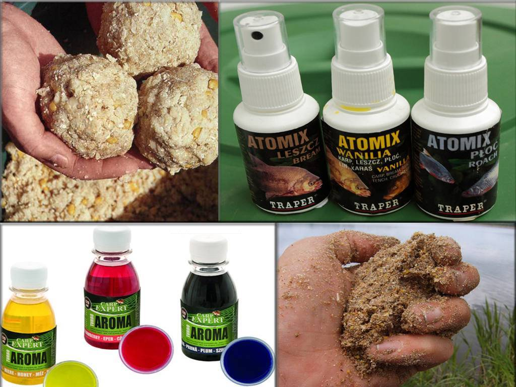 Ароматизатор для карпа и какой запах любит сазан