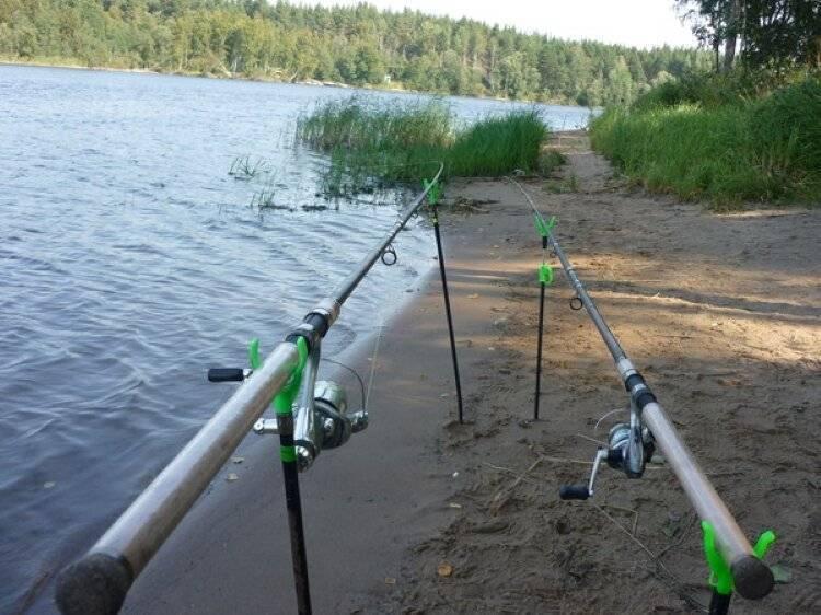 ⭐️рейтинг лучших катушек для фидера для настоящих рыбаков