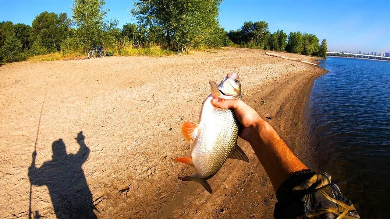 Где порыбачить в новосибирской области: обзор лучших мест