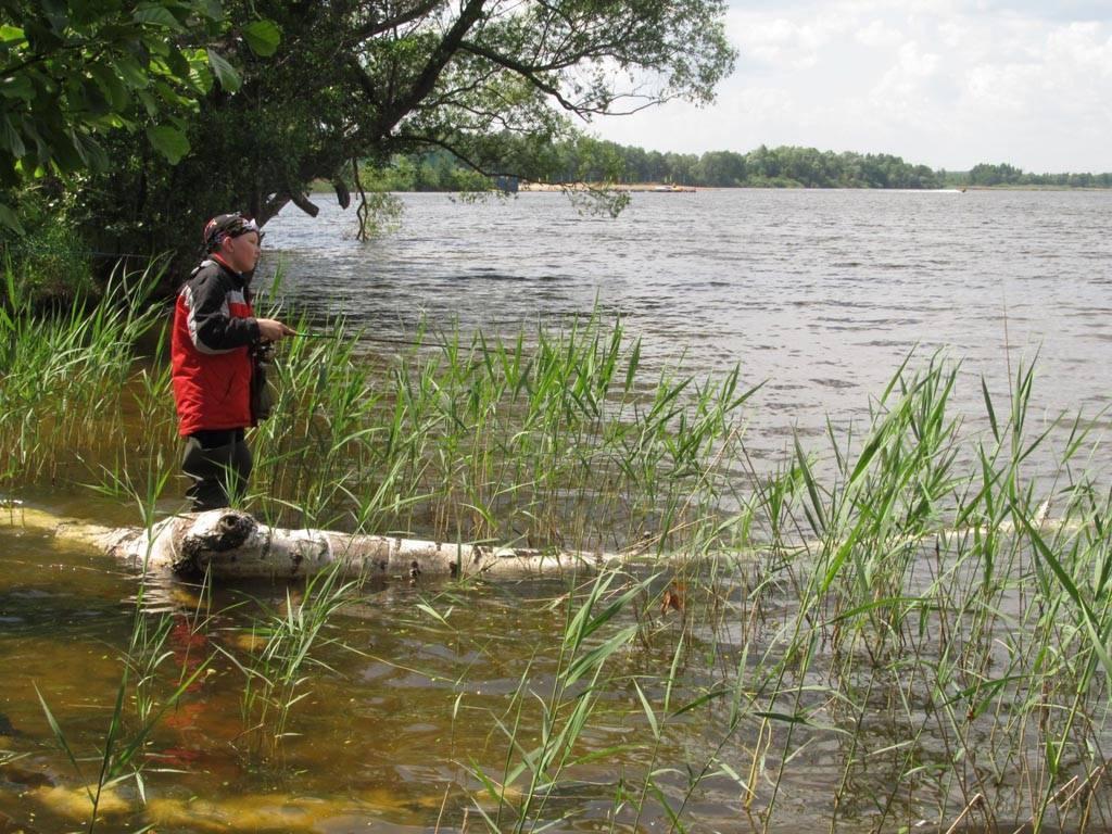 Муромское озеро шатура рыбалка
