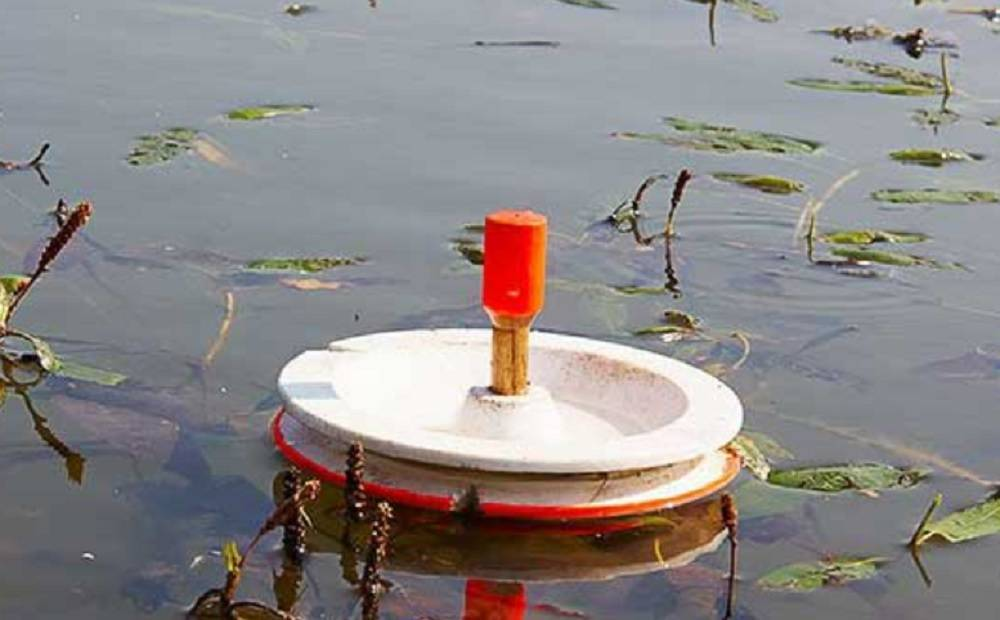 Рыболовные кружки на щуку: конструкция, оснастка, способы ловли на озерах и реках