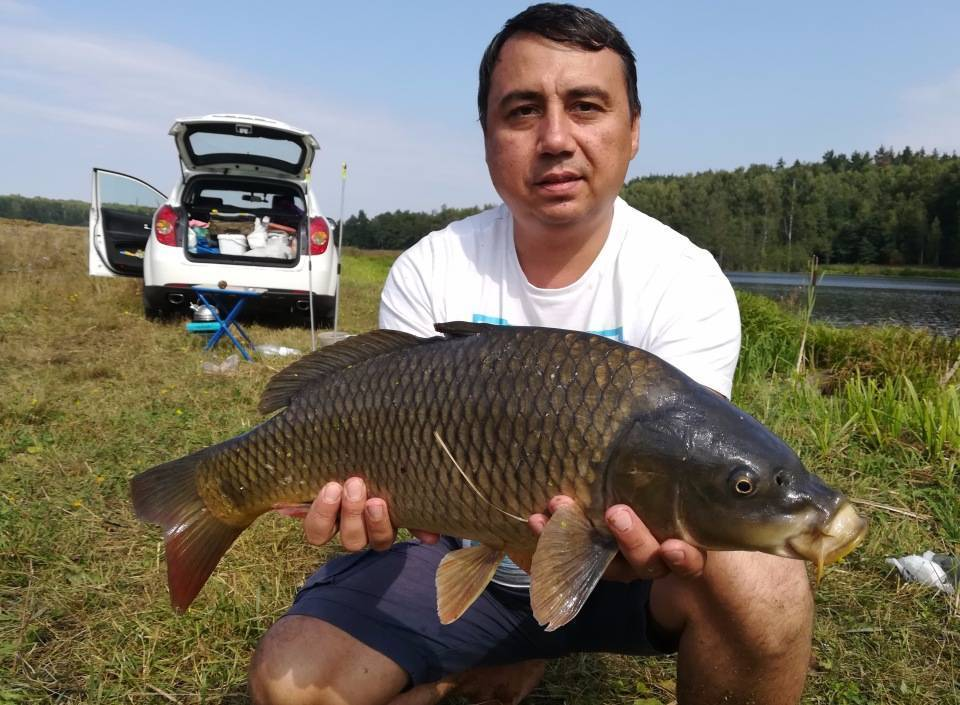 Рыбалка в ульяновске и ульяновской области — куда поехать, ловля в поселках новиковка, терентьевка