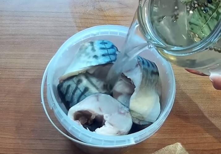 Как засолить рыбу в домашних условиях: простые пошаговые видео рецепты для засолки любой рыбы - все курсы онлайн