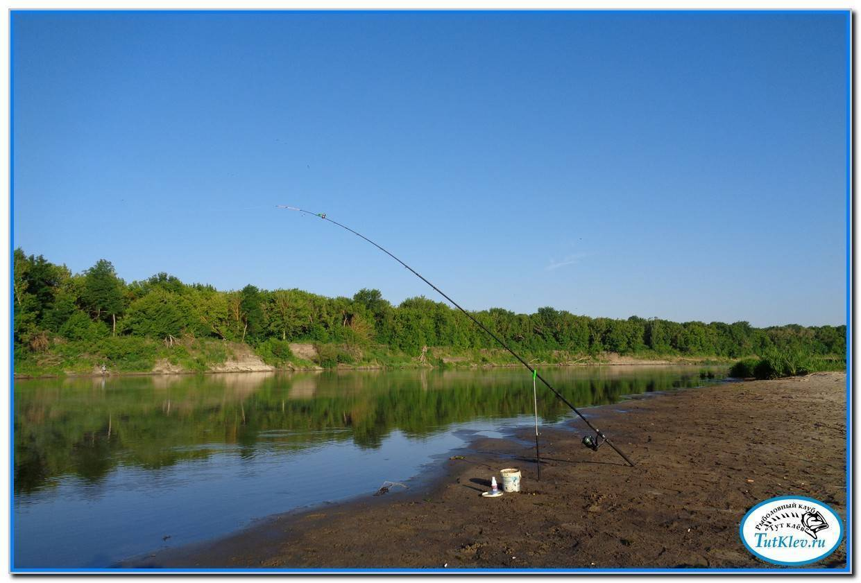 Рыбалка в ростовской области на реках, озерах, платных базах
