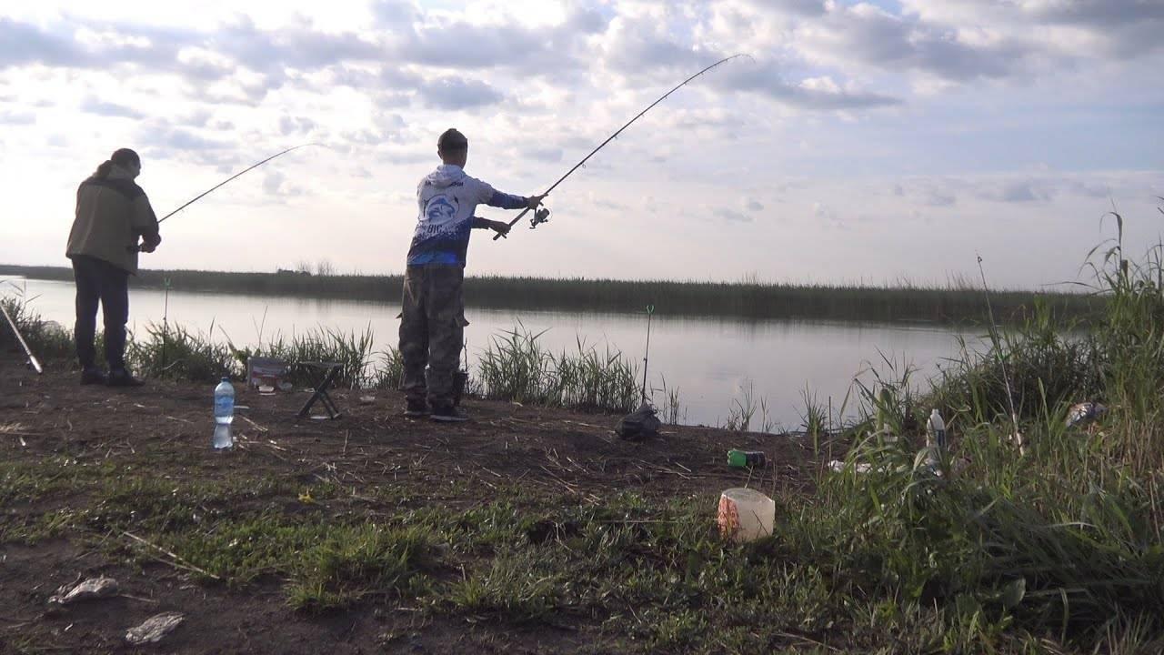 Монтаж фидерной оснастки на карася - снасти и условия ловли