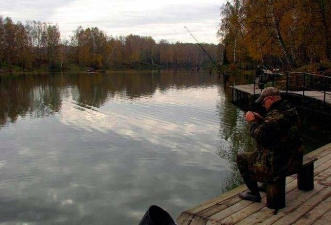 Крх мосфишер: платная рыбалка в чехове подмосковье, описание и особенности прудов