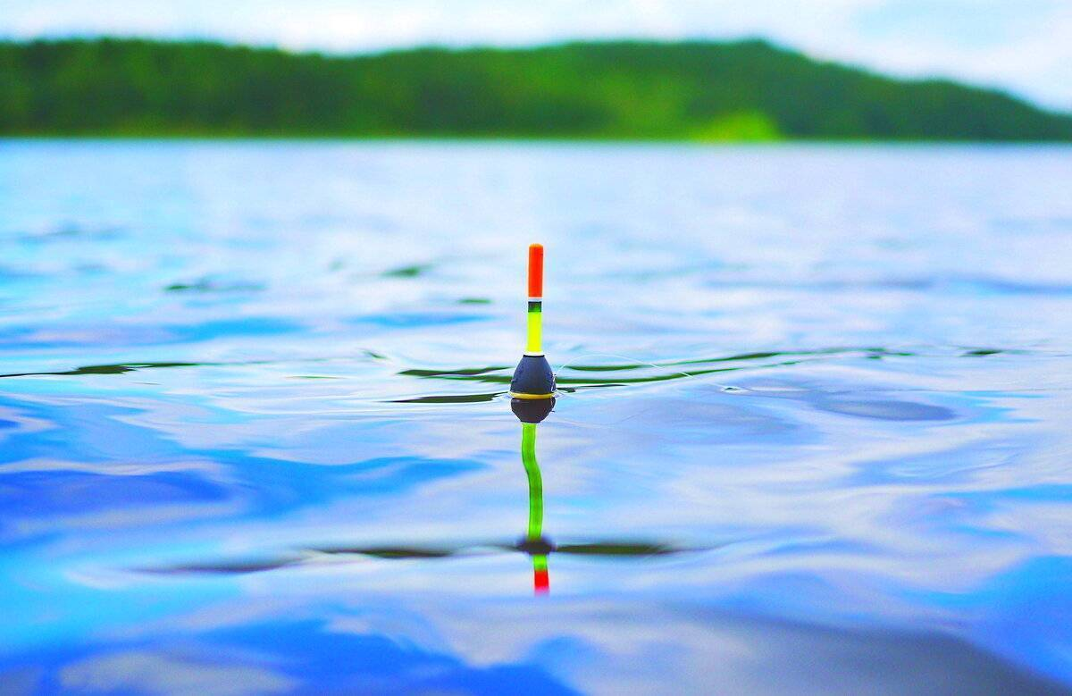 Обзор камер для подледной рыбалки | выбор и видеоинструкции