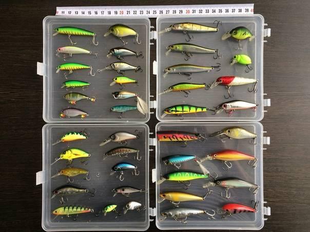 Летняя рыбалка - ловля окуня - советы рыболову