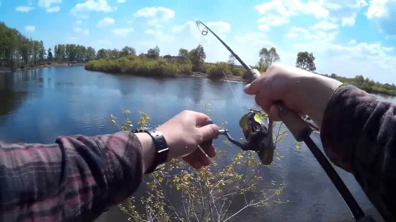 Как ловить голавля в апреле
