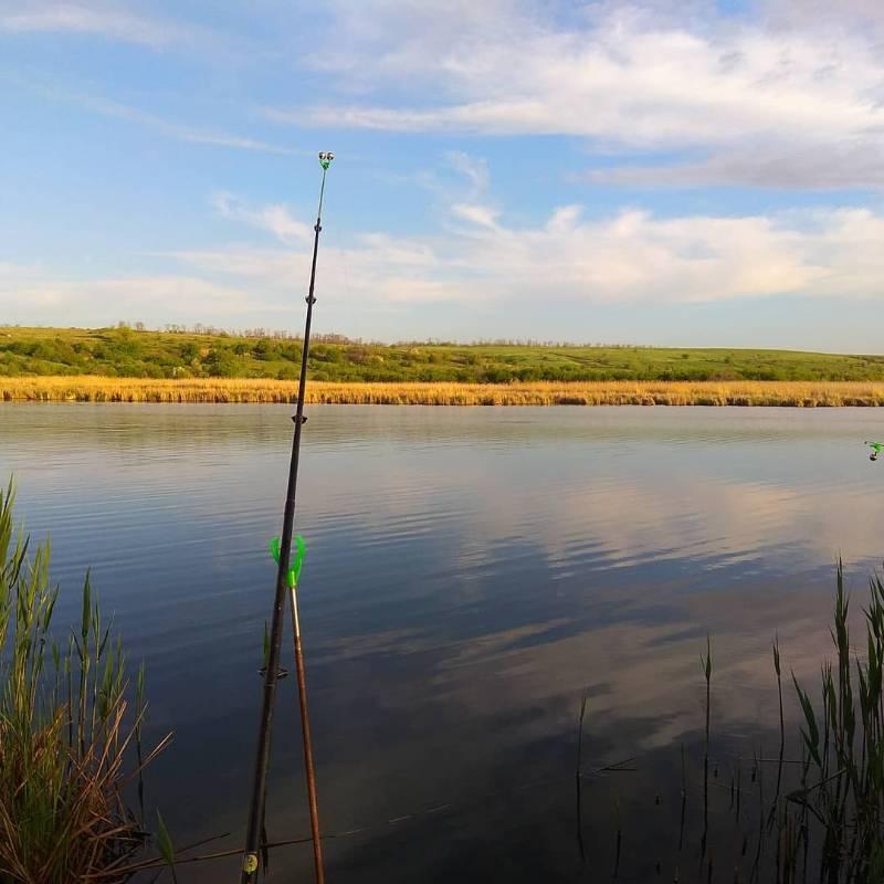 Рыбалка в темрюке: особенности ловли, какие есть рыболовные базы, видовой состав рыб