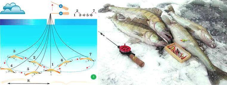 Увлекательная ночная ловля судака на воблеры: выбор места, оснастки и техники ловли