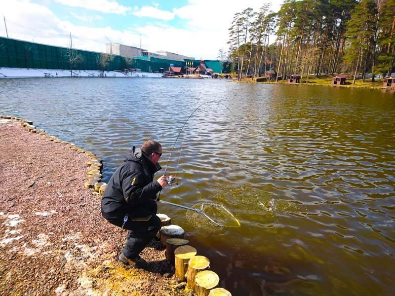 Платная рыбалка как организовать