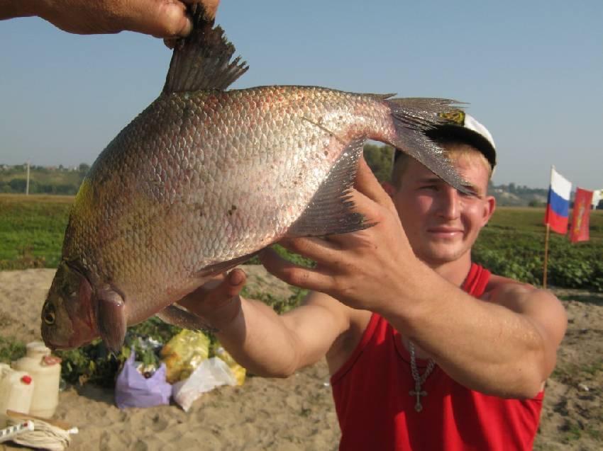Рыбалка в брянской области (32)   карта рыболовных мест