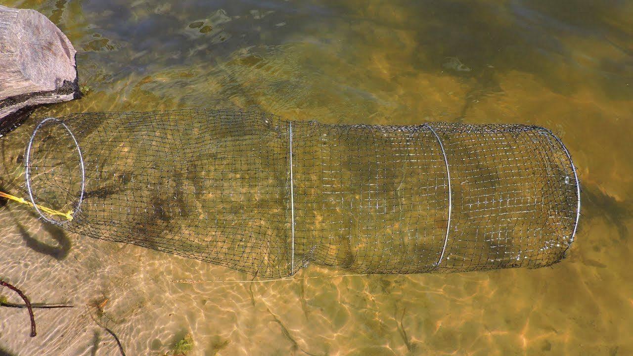 Как выбрать садок для рыбы: разновидности и обзор садков