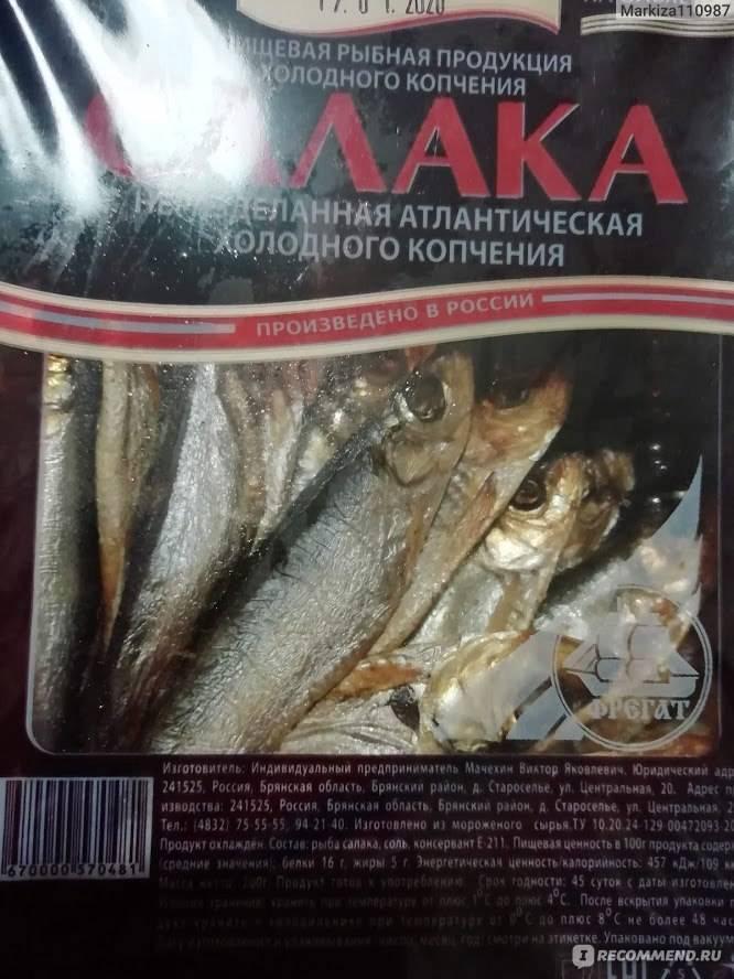 Салака – польза и вред небольшой и вкусной рыбки