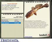Промысловый бычок-мартовик