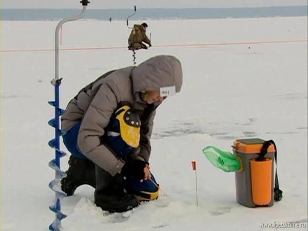 Рыбалка в николаевке липецкой области: как доехать до пруда в селе? карповая и другая рыбалка