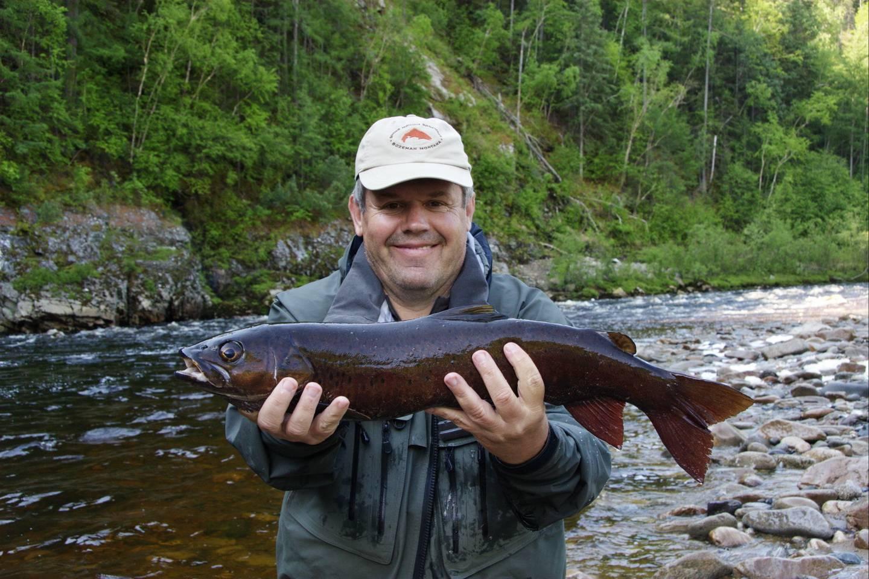 Таймень рыба фото описание цвет мяса
