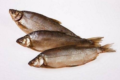 Рыба сырок где водится - всё о печени