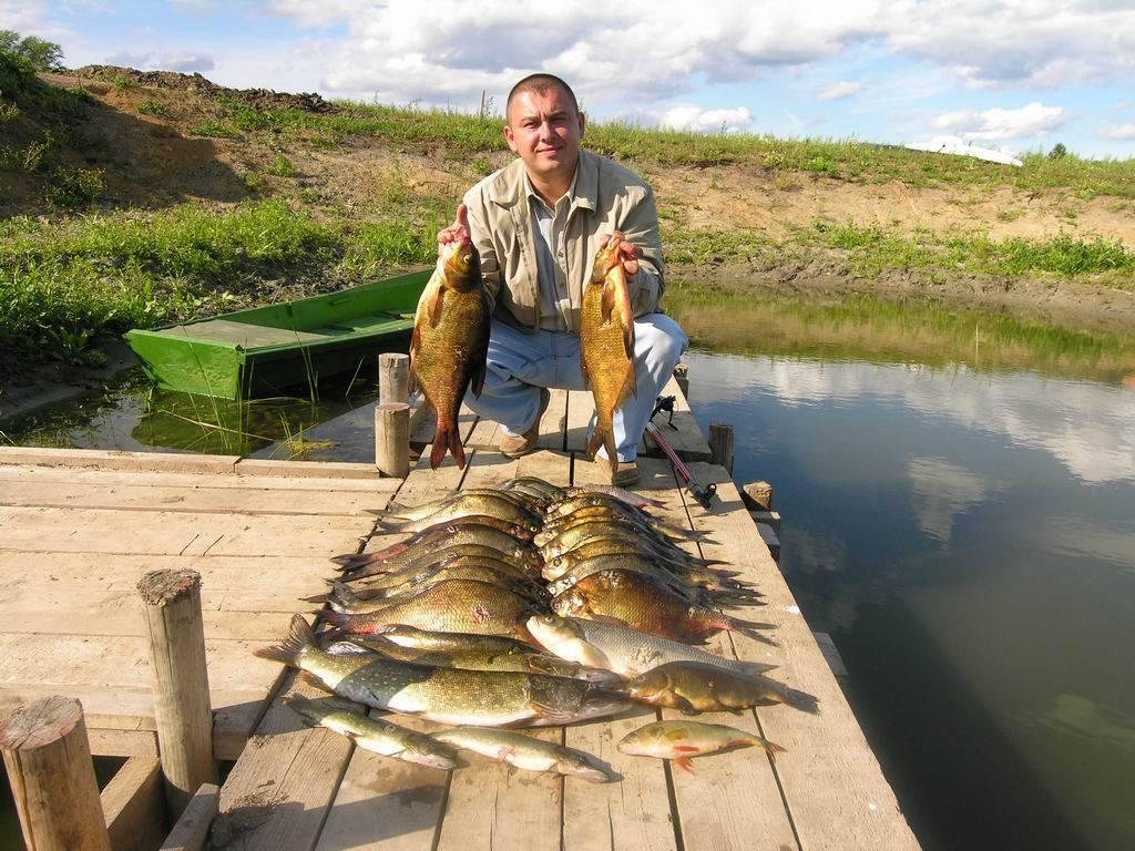 12 лучших рыболовных мест ростовской области – рыбалке.нет