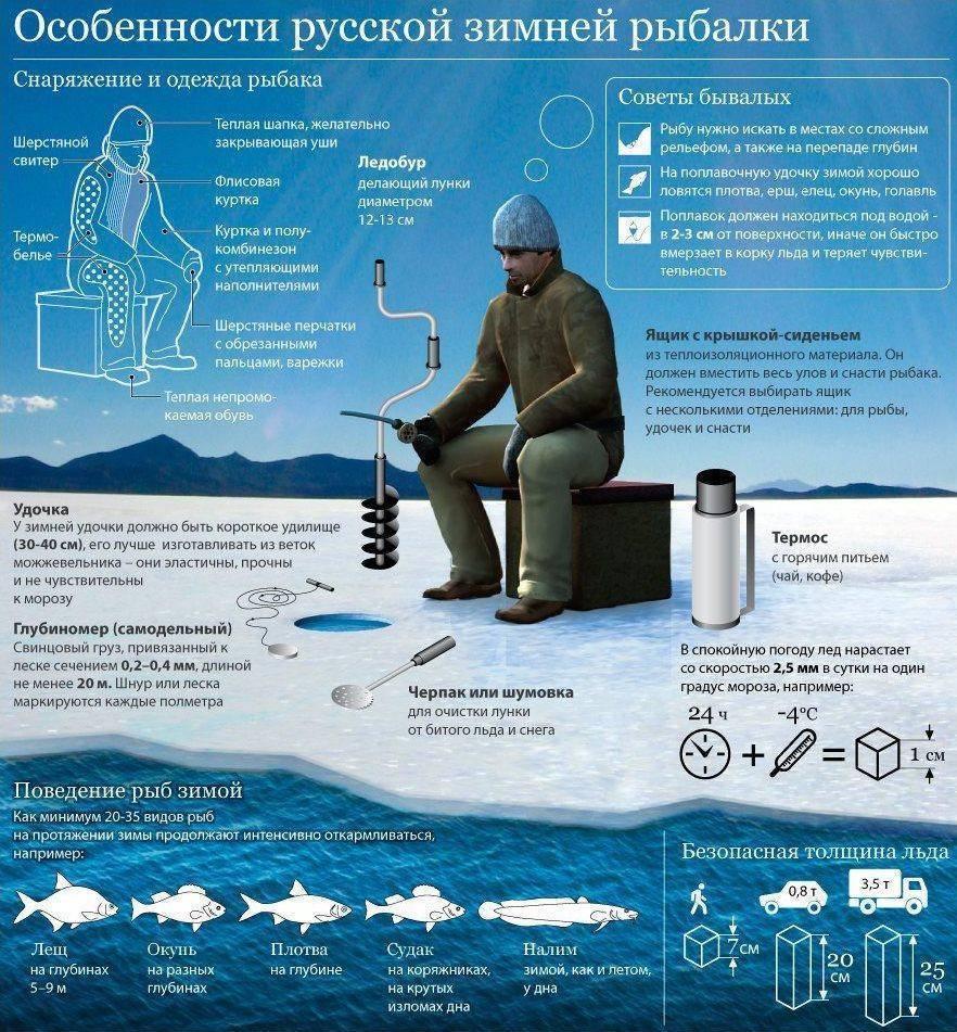 Что нужно для зимней рыбалки для начинающих: список снастей