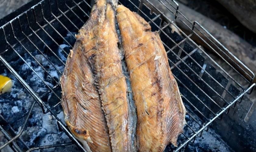 Форель в фольге на мангале, рецепты запеченной рыбы на углях