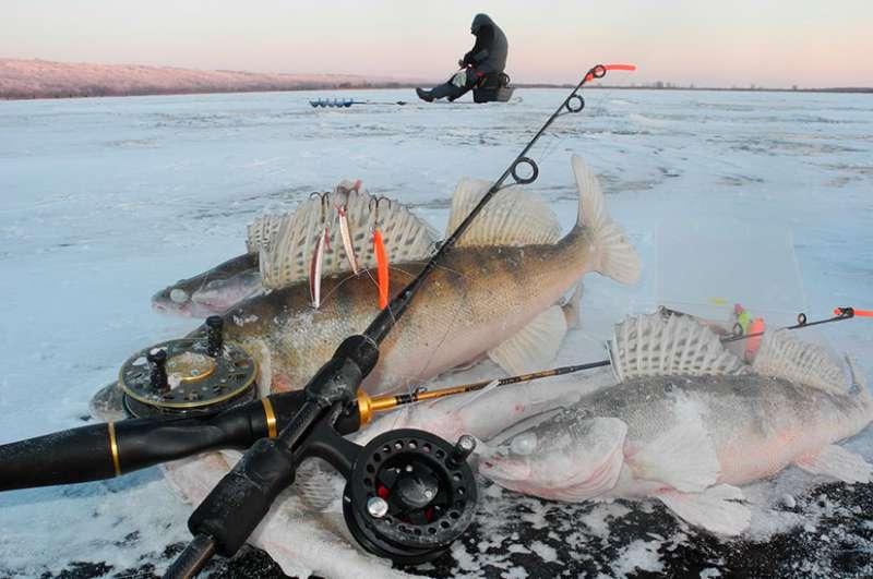 Рыбалка в липецкой области (48) | карта рыболовных мест