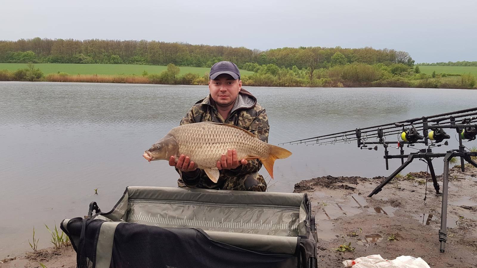 Платная рыбалка в россии: лучшие места для рыбалки на реках и озерах