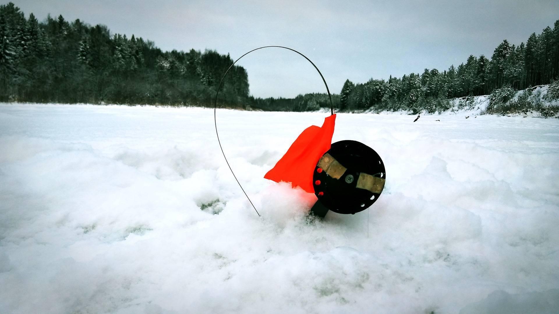 Ловля щуки зимой на жерлицы