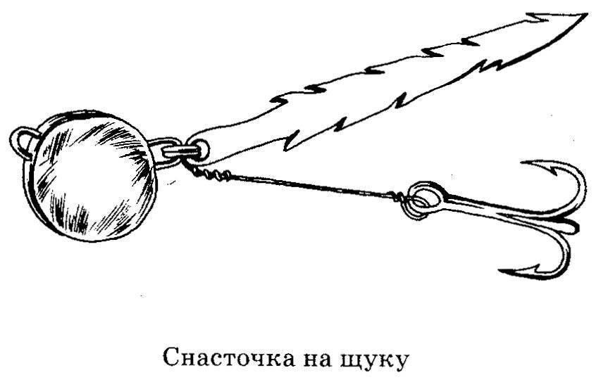 ᐉ как поймать трофейную щуку: ловля щуки спиннингом, ловля щуки на кружки и ловля щуки троллингом - ✅ ribalka-snasti.ru