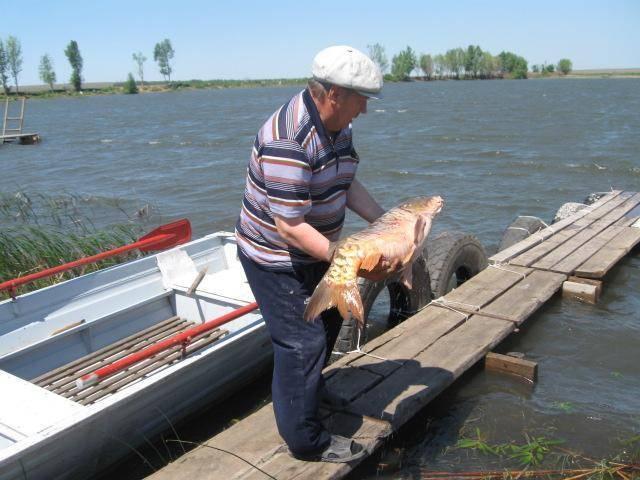 Все о рыбалке в самаре и самарской области