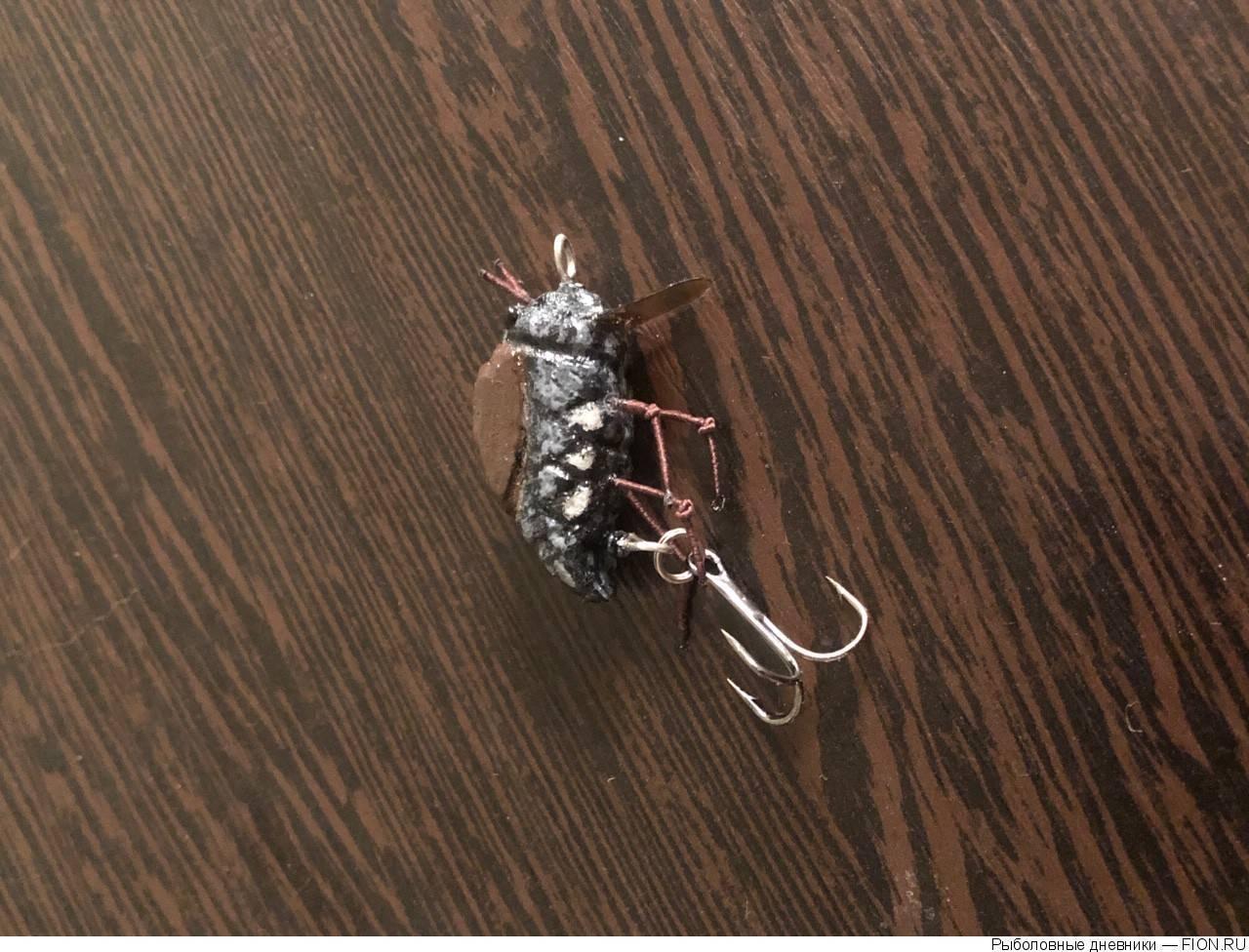 Как ловить голавля на майского жука и на спиннинг