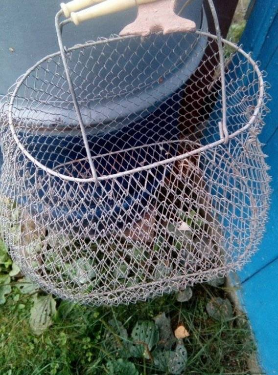 Садок для рыбы: какой бывает (металлический, капроновый), форма и крепление