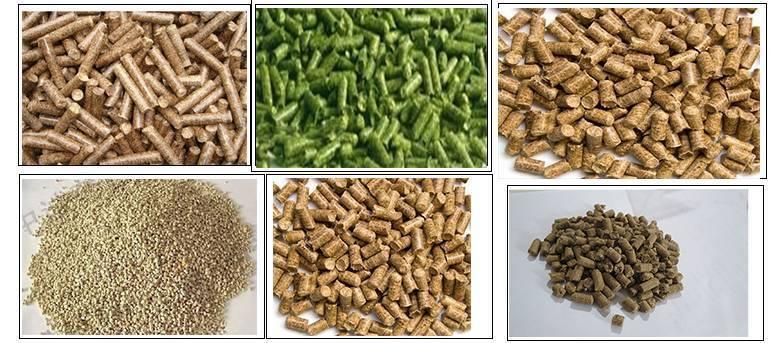 Как выбрать корм для форели?