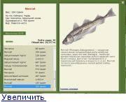 Рыба терпуг. терпуг — полезные свойства. польза и вред терпуги для организма