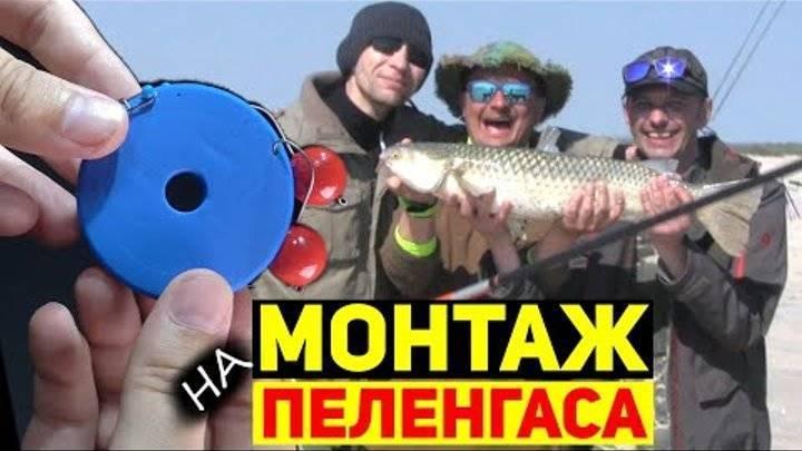 Ловля пеленгаса на азовском и чёрном морях - рыбколов!