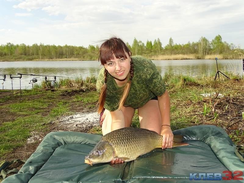 Рыбалка в выгоничском районе, выгоничи. прогноз клева. видео