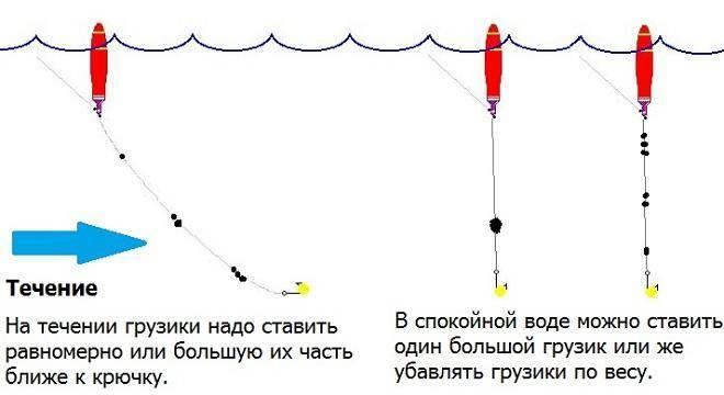 Как ловить форель на платных водоемах