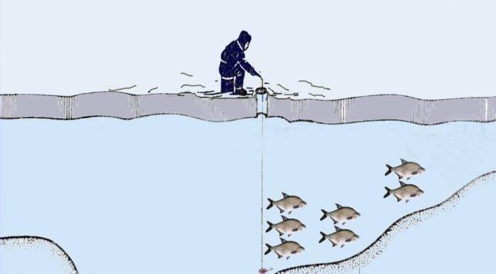 Полезные 15 советов (лайфхаков) для рыбалки, чтобы клёв был отменным