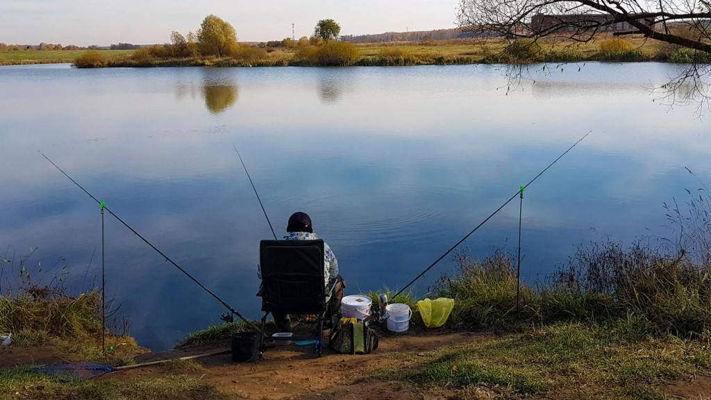 Рыбалка в волгоградской области. поиск по рекам и озерам