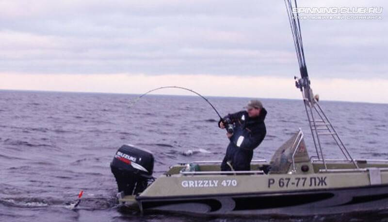Троллинговая рыбалка