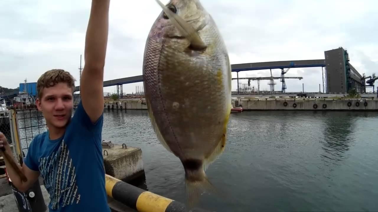 Ловля ставридки в черном море - советы рыболовов