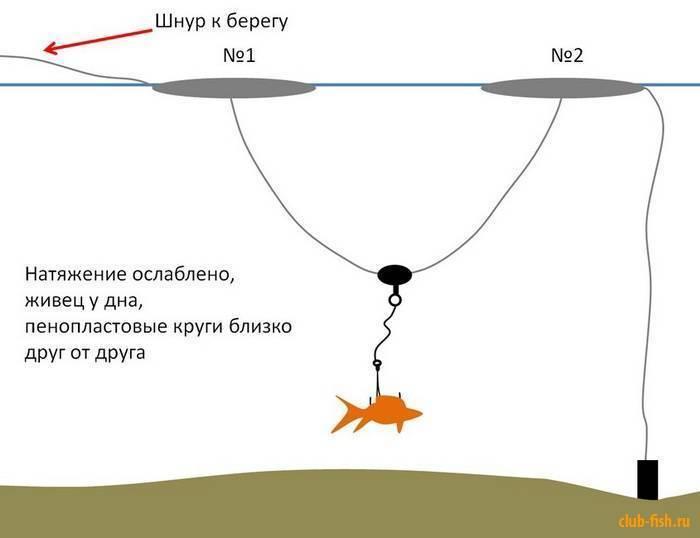 Хитрый способ насадить правильно живца, чтобы он в воде вёл себя реалистично и привлекал хищника
