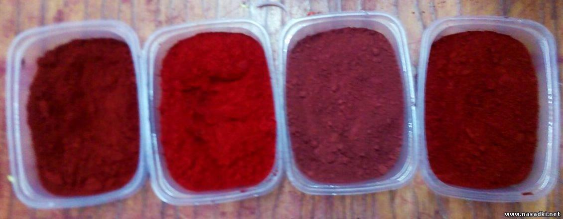 Как покрасить опарыша в красный цвет?